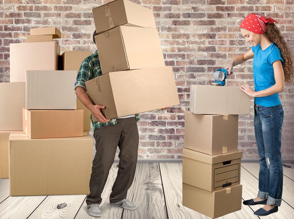 Nuevas Áreas de Trabajo Para Empacadores